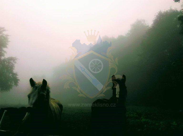 Koně zámek Líšno