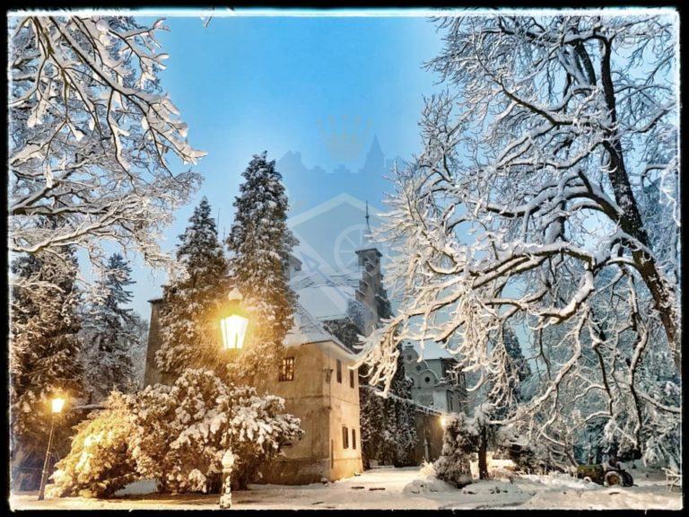 Zámek Líšno zima